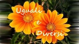 Uguali e Diversi