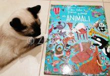 La recensione di un libro pieno pieno di animali di Alexandra Garibal e Claudia Bielinsky edito da Gallucci Editore